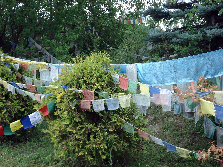 Free stock photo of Buddhism, prayer flag