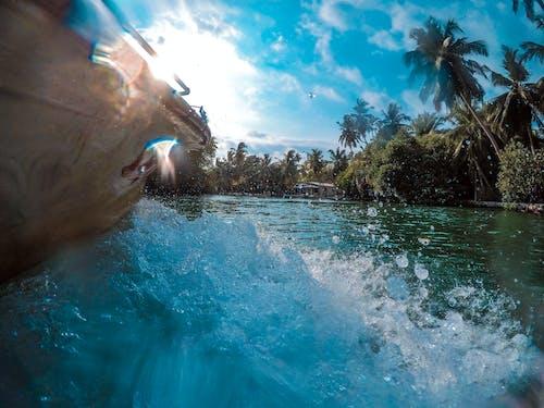 Foto stok gratis air, alam, angkasa, aqua