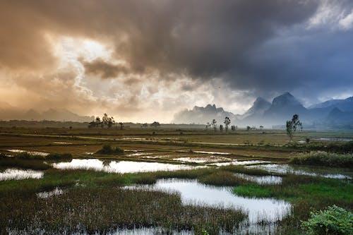 Gratis lagerfoto af bjerge, dagslys, græs, græsarealer