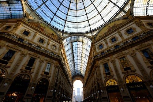 강철, 건축, 구조, 돔의 무료 스톡 사진