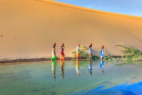 Photos gratuites de amusement, bocaux, bord de mer, dune