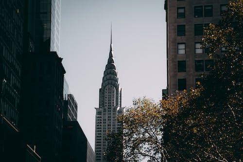 克萊斯勒大廈, 地標, 城市, 塔 的 免費圖庫相片