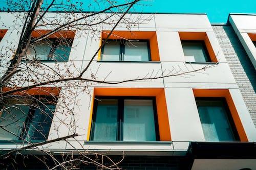 Kostnadsfri bild av arkitektur, byggnad, fönster, lägenhet