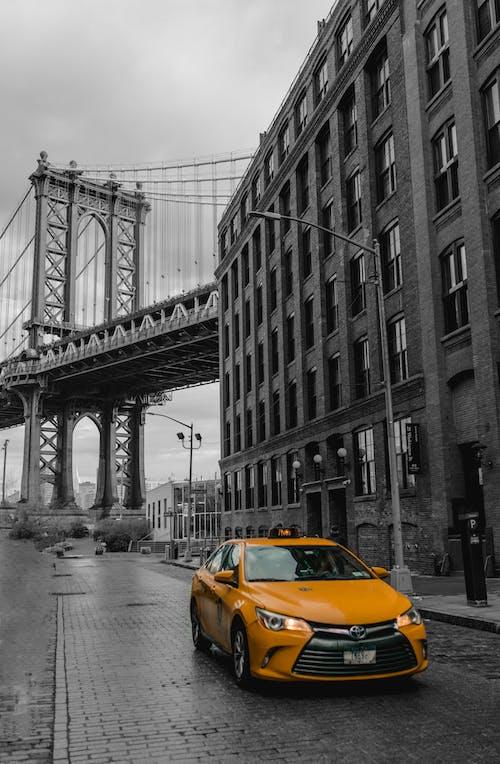 Gratis lagerfoto af dumbo, gul bil, gul førerhus, gul taxi