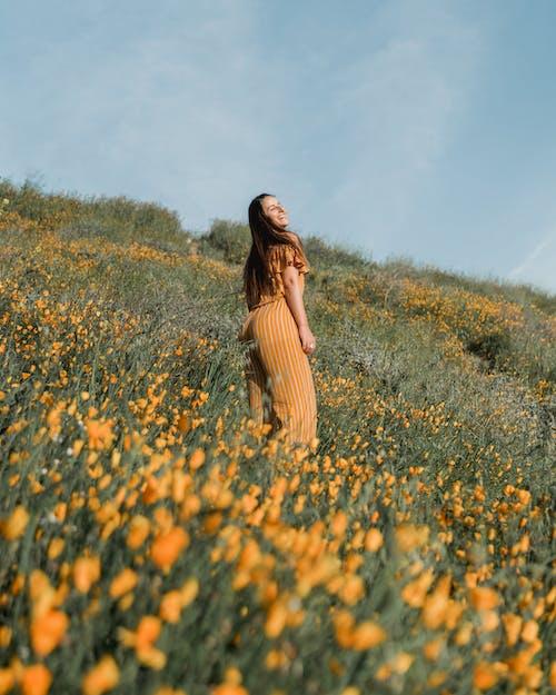 Photos gratuites de bonheur, campagne, champ de fleurs, clairière