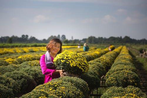 Ảnh lưu trữ miễn phí về cánh đồng, ngoài trời, những bông hoa đẹp, nông trại