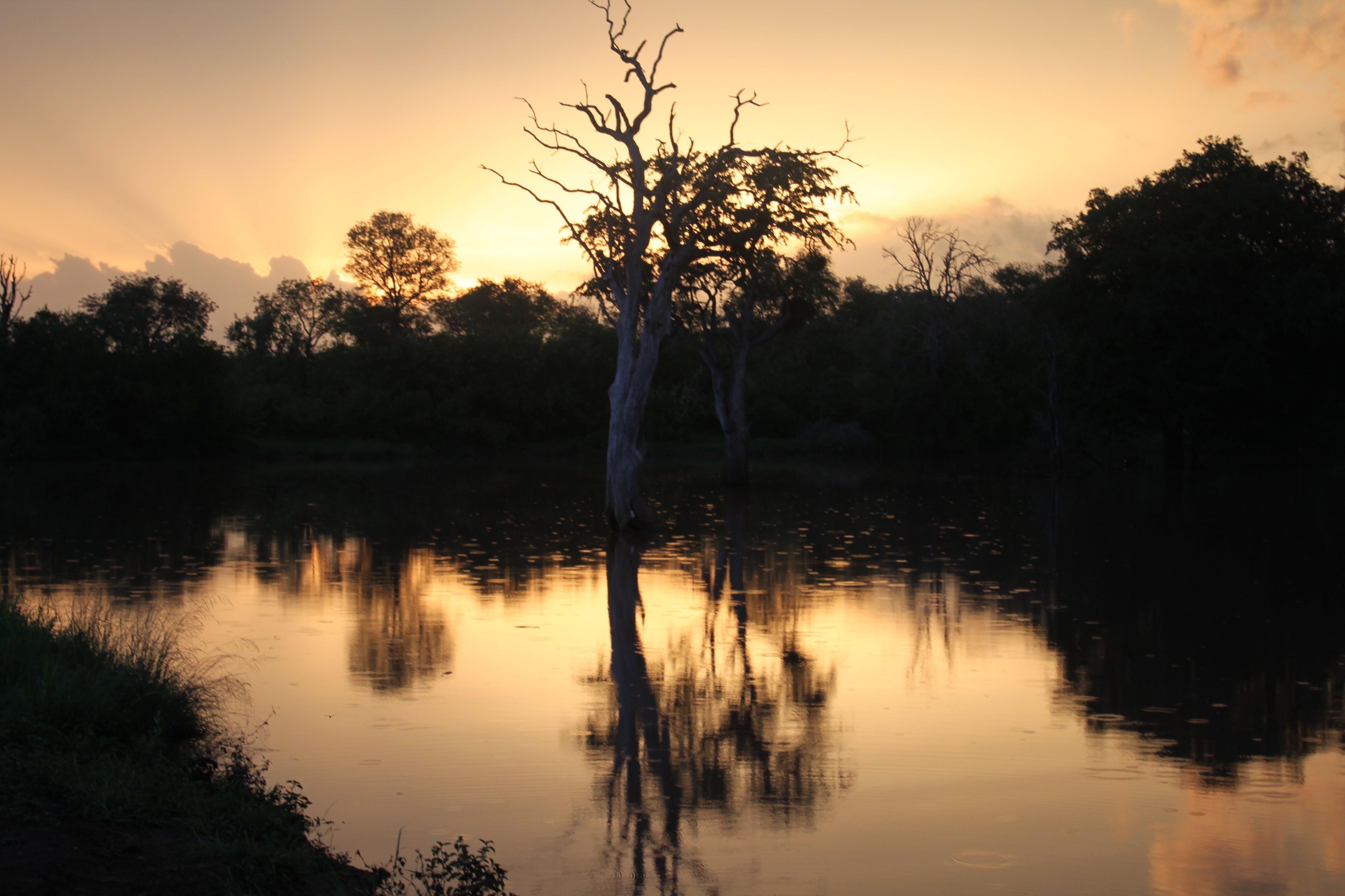 Free stock photo of africa, landscape, nature, sunset