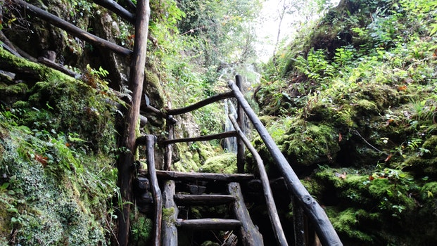 Black Wood Stairs Going to Waterfall during Daytime