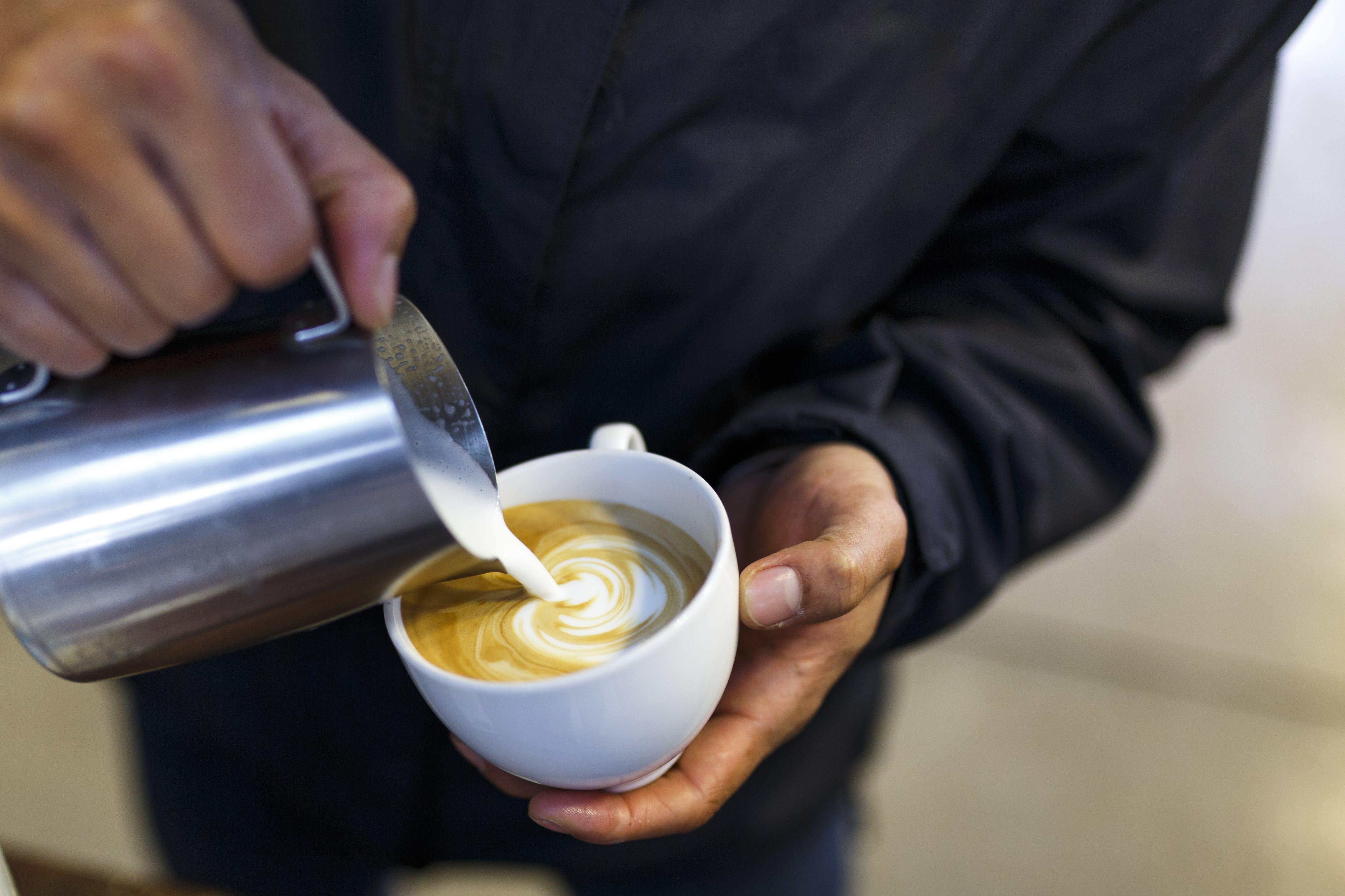 barista, beltéri, cappuccino, csésze témában