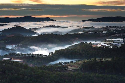 Immagine gratuita di alba, alberi, ambiente, bellissimo