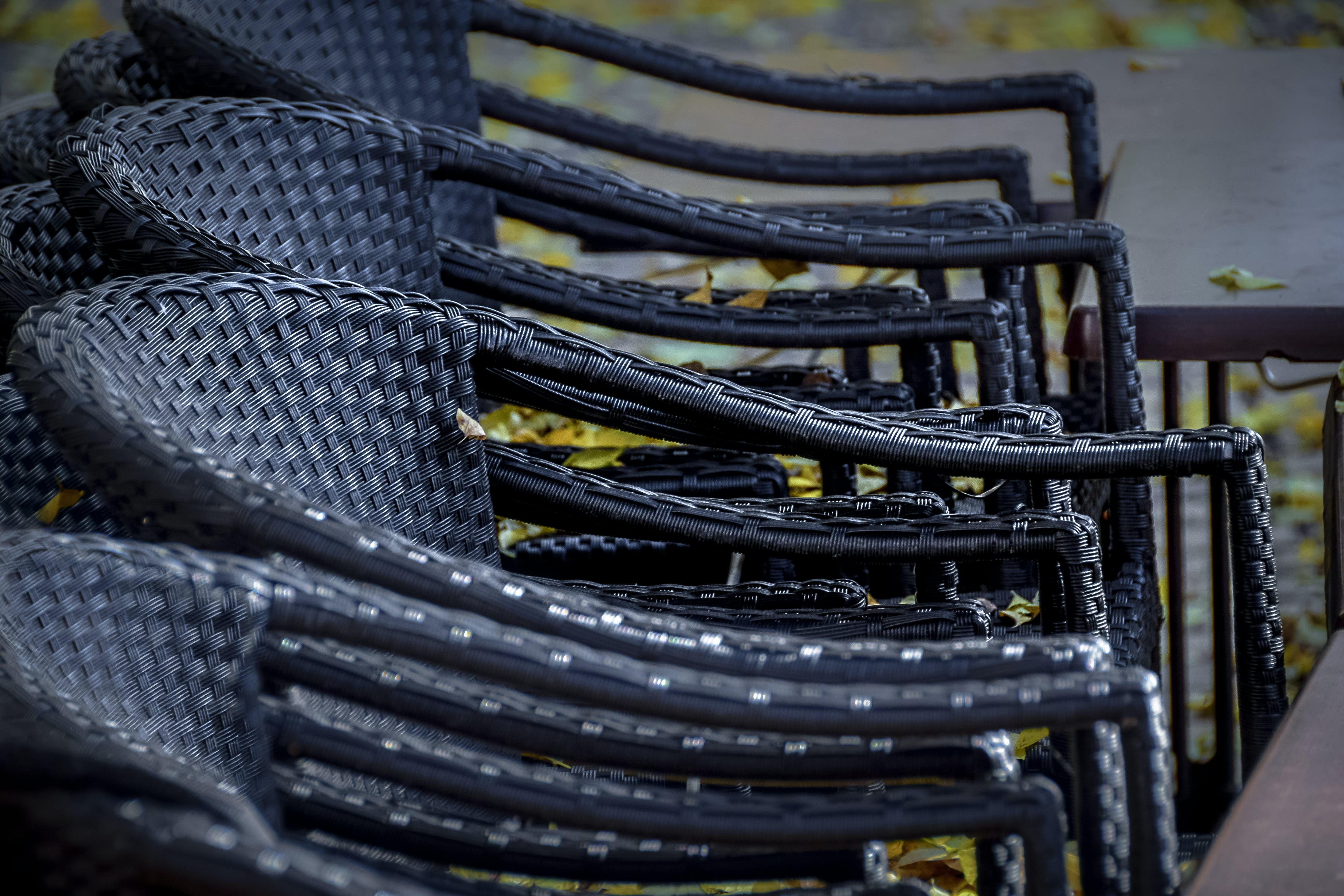 Free stock photo of garden, leaves, autumn, chairs
