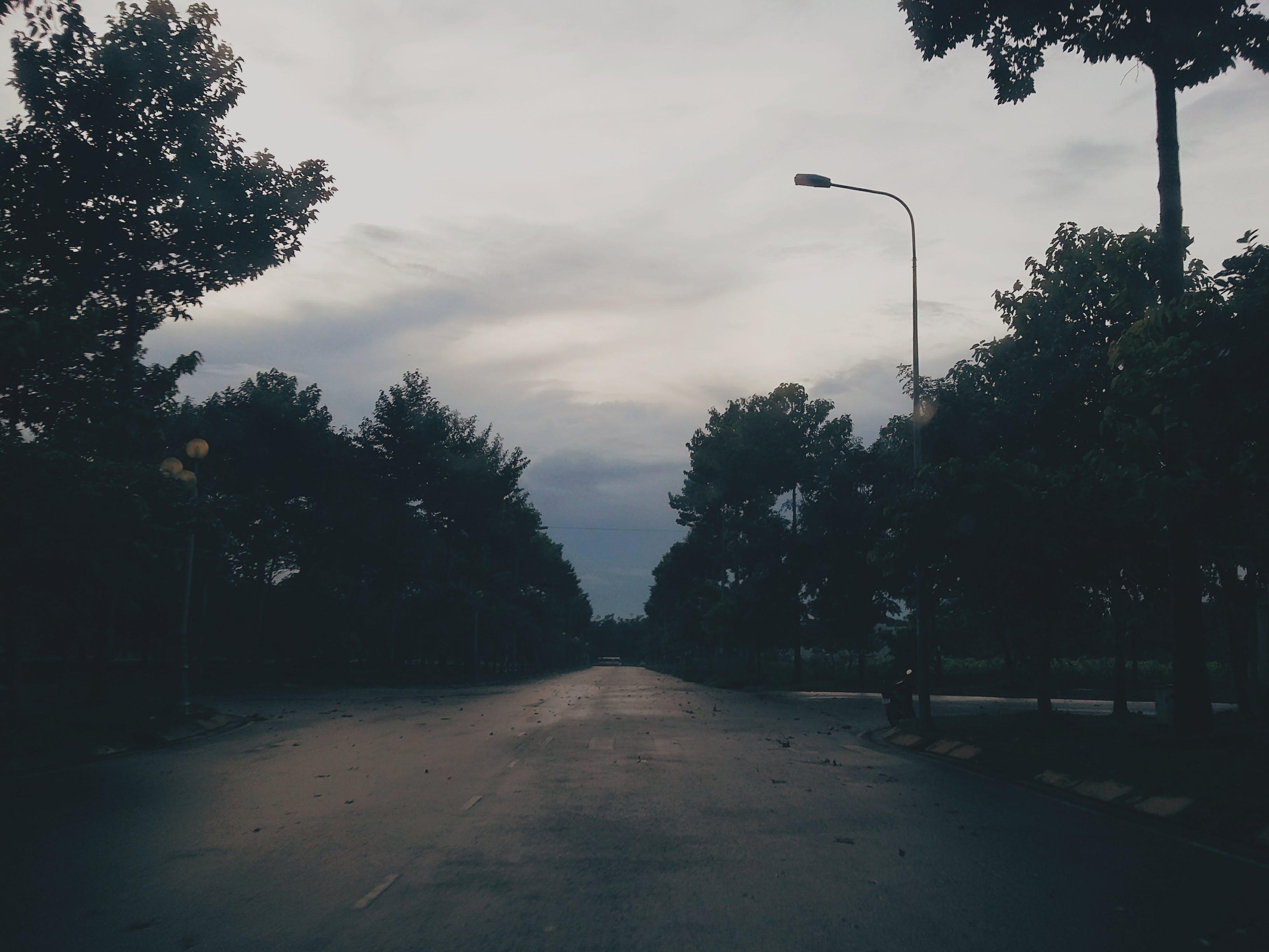 Free stock photo of #Darkness #Dark #Sad #Park, #street #Vietnam #VN, #Tree #Trees #LightPost #LampPost #SunSet #Sadness