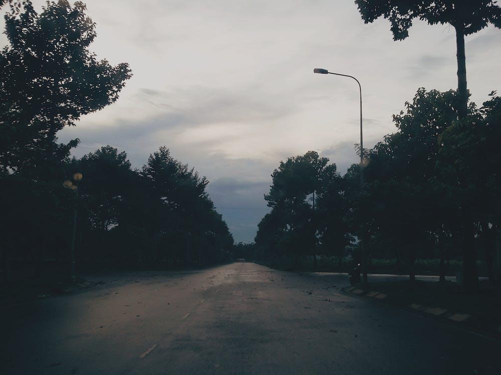 # darkness #dark #sad #park, #street #vietnam #vn, #tree #trees #lightpost #lamppost #sunset #sadness