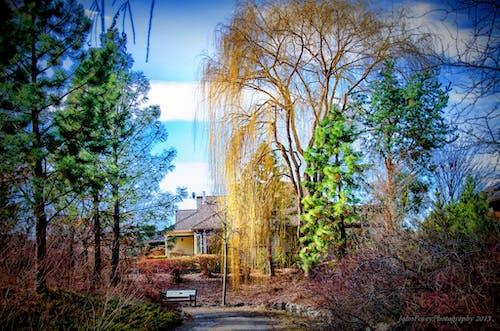 ağaçlar, bina, keçi yolu, patika içeren Ücretsiz stok fotoğraf