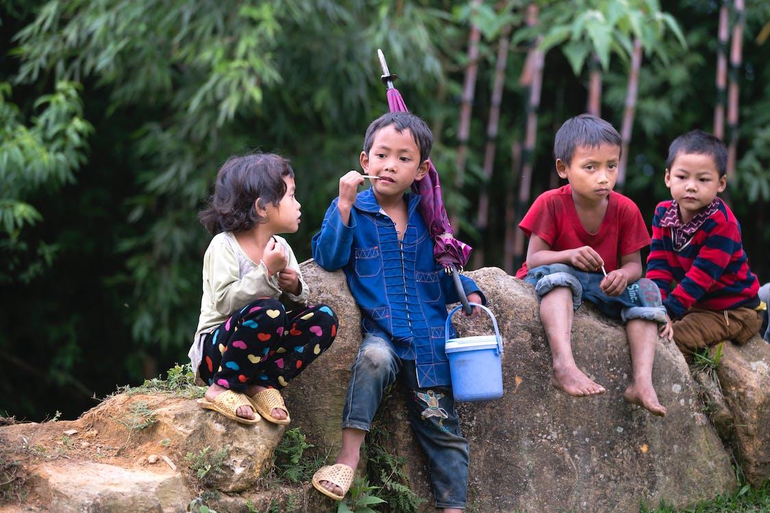Children Sitting on Rock Near Trees