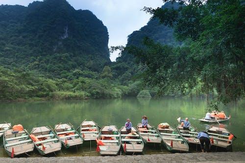 Foto d'estoc gratuïta de a l'aire lliure, aigua, arbres, barques