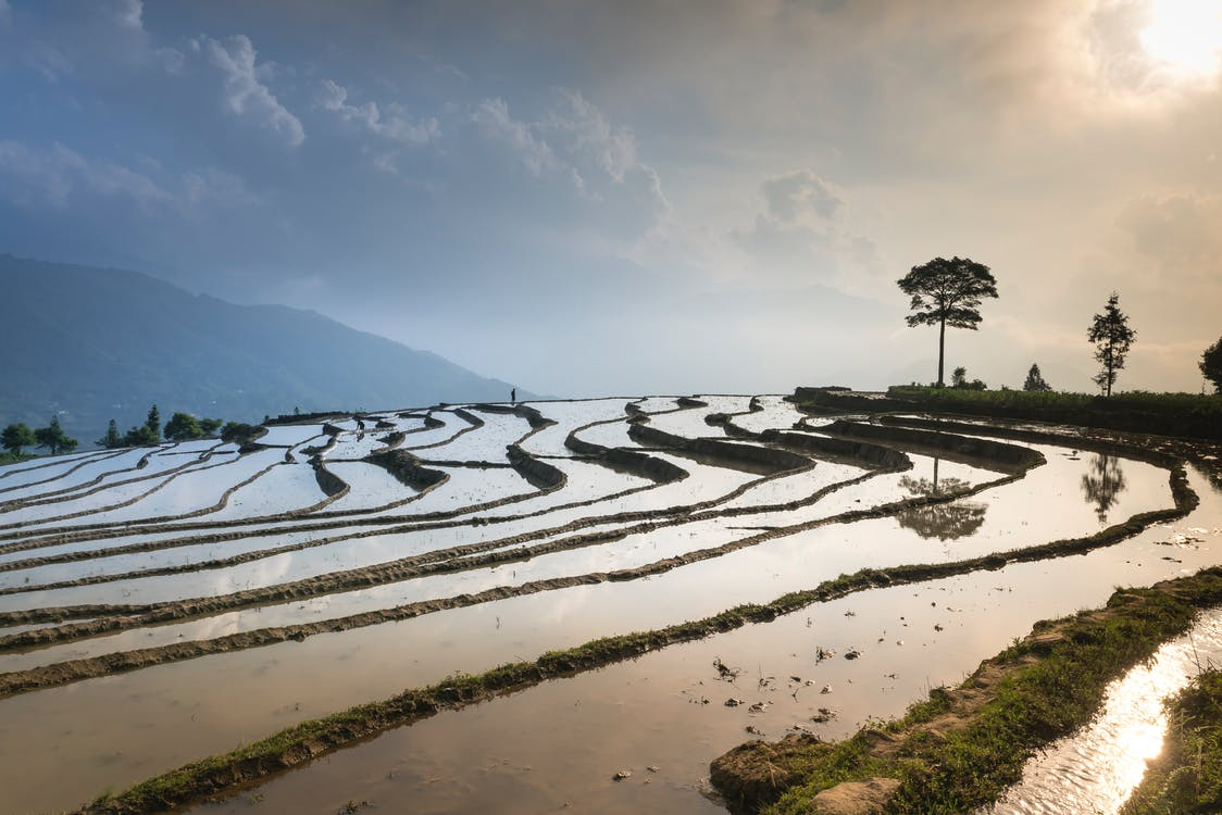 agricultura, água, ao ar livre