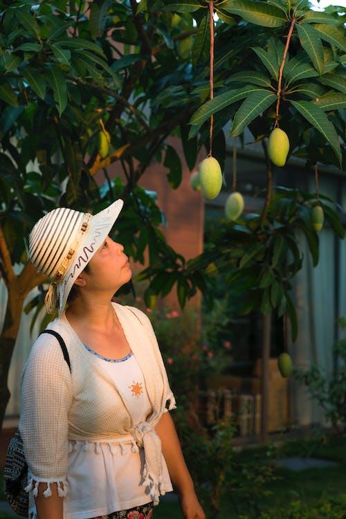 Ilmainen kuvapankkikuva tunnisteilla asu, hattu, hedelmät, henkilö