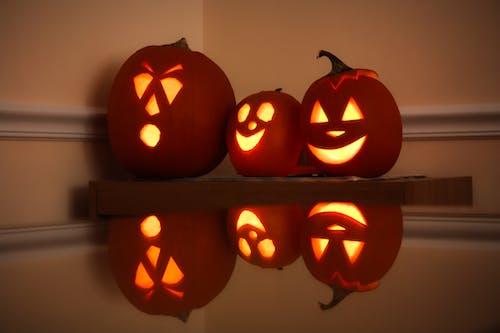 Gratis lagerfoto af græskar, græskarlygte, hallowee