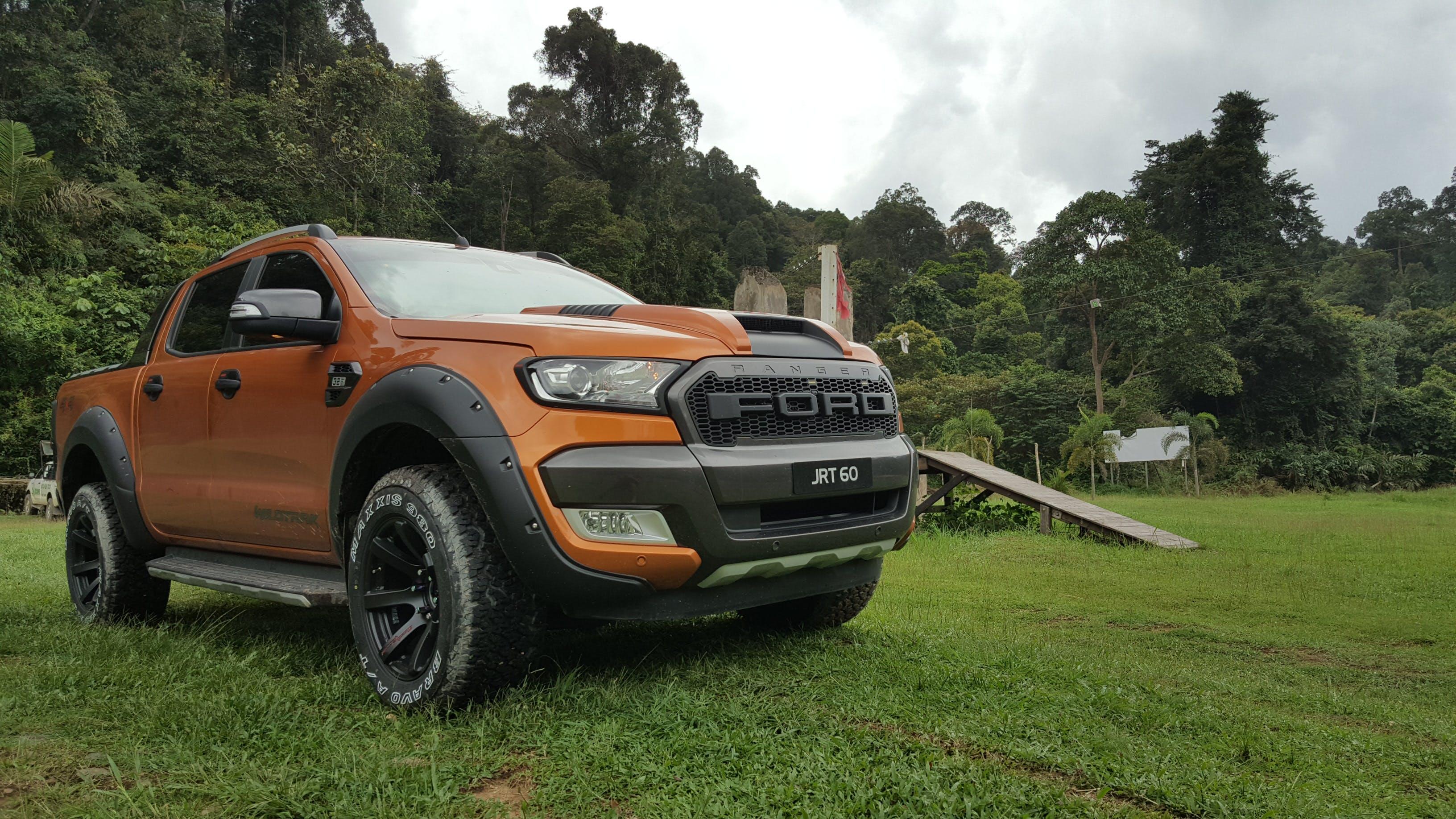 Free stock photo of car, desktop backgrounds, ford ranger, forest