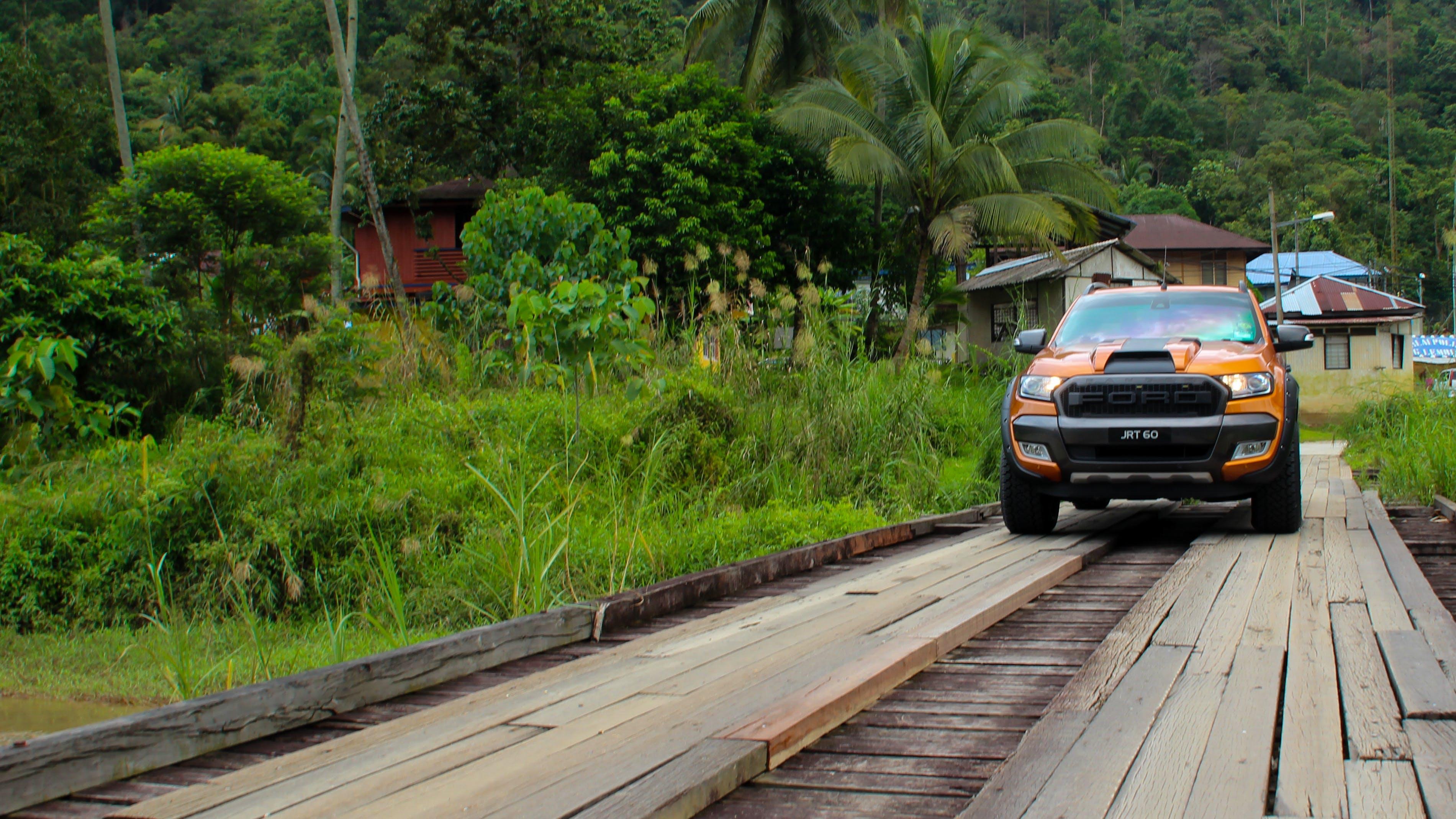 Free stock photo of car, ford ranger, nature, orange