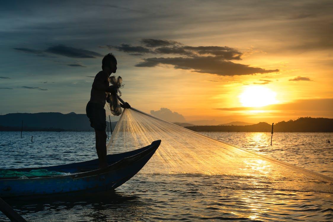 bakbelysning, båt, daggry