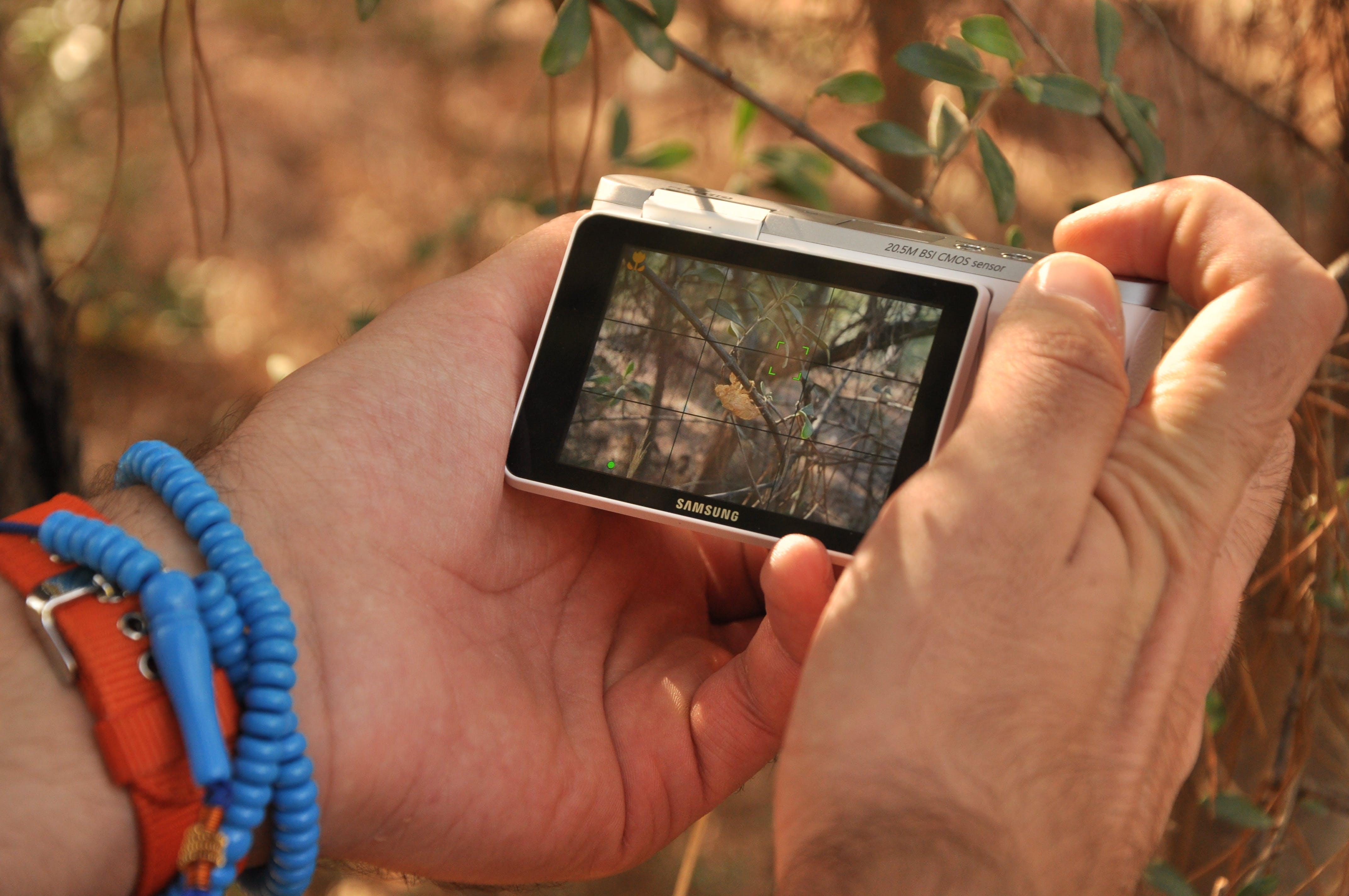 Kostenloses Stock Foto zu bildschirm, digitalkamera, doÄŸa fotoÄŸrafçılığı, hände