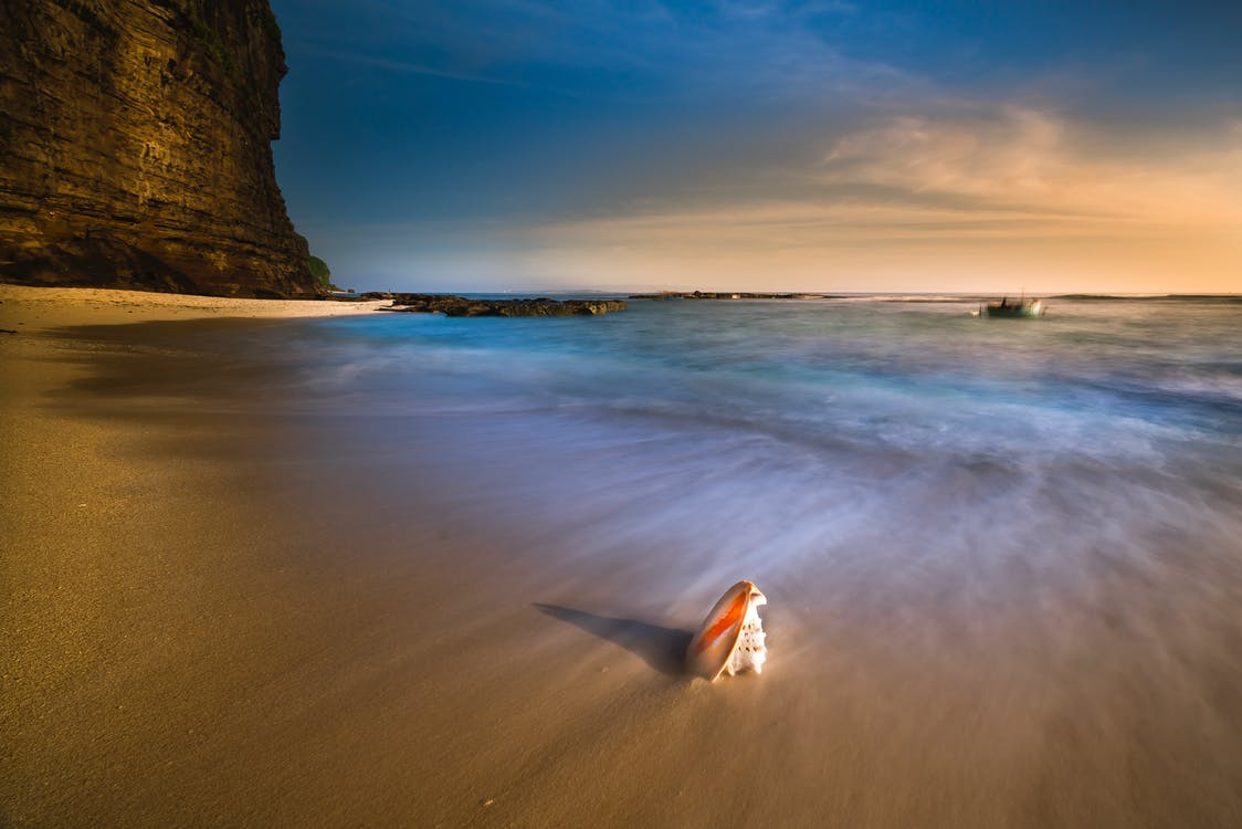 areia, beira-mar, concha