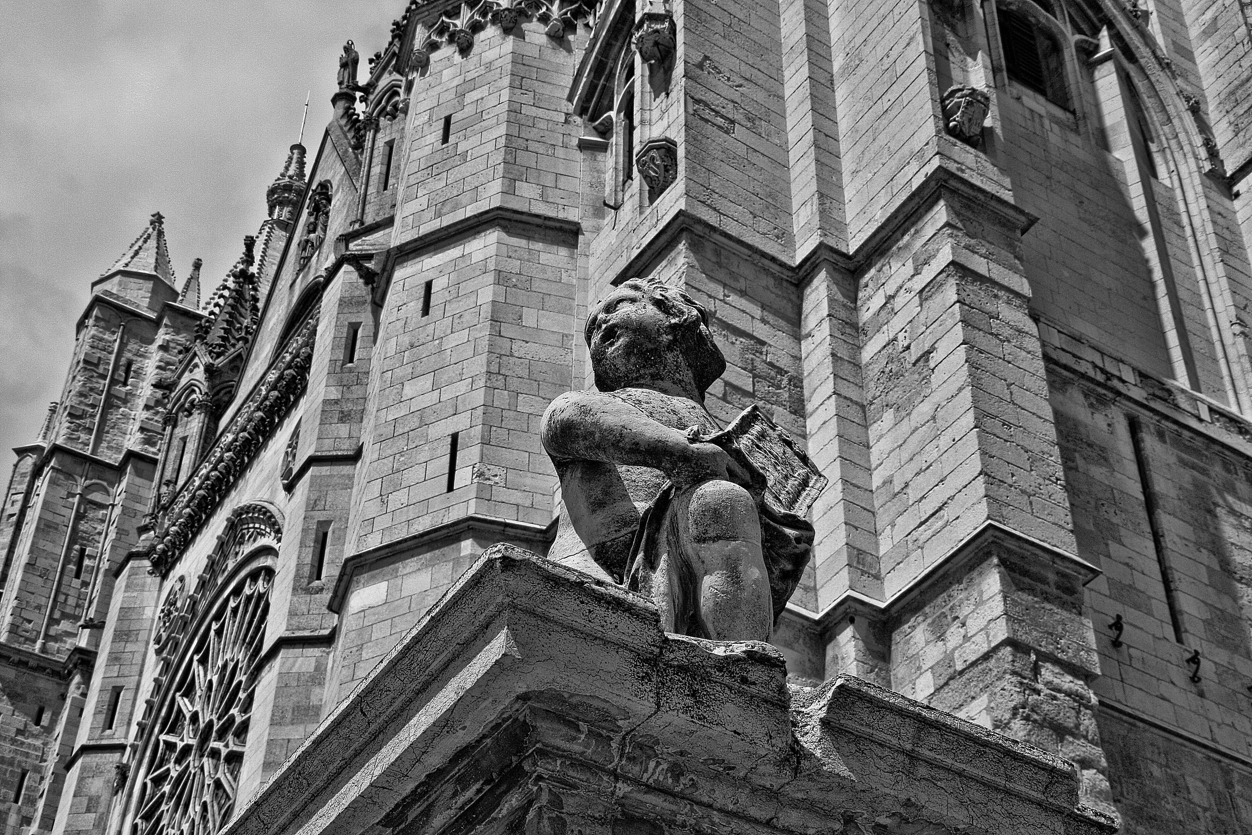 Free stock photo of cathedral, statue