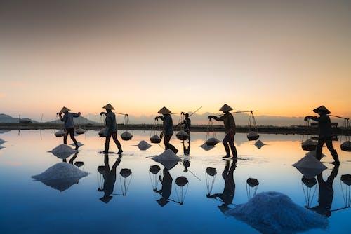 Gratis stockfoto met achtergrondlicht, dageraad, groep, mensen