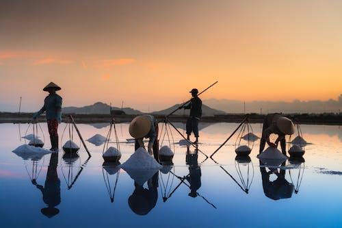 Photo of People Collecting Sea Salt
