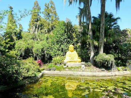 Fotobanka sbezplatnými fotkami na tému Buddha, príroda, socha