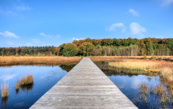 Free stock photo of jetty, landscape, nature, sky