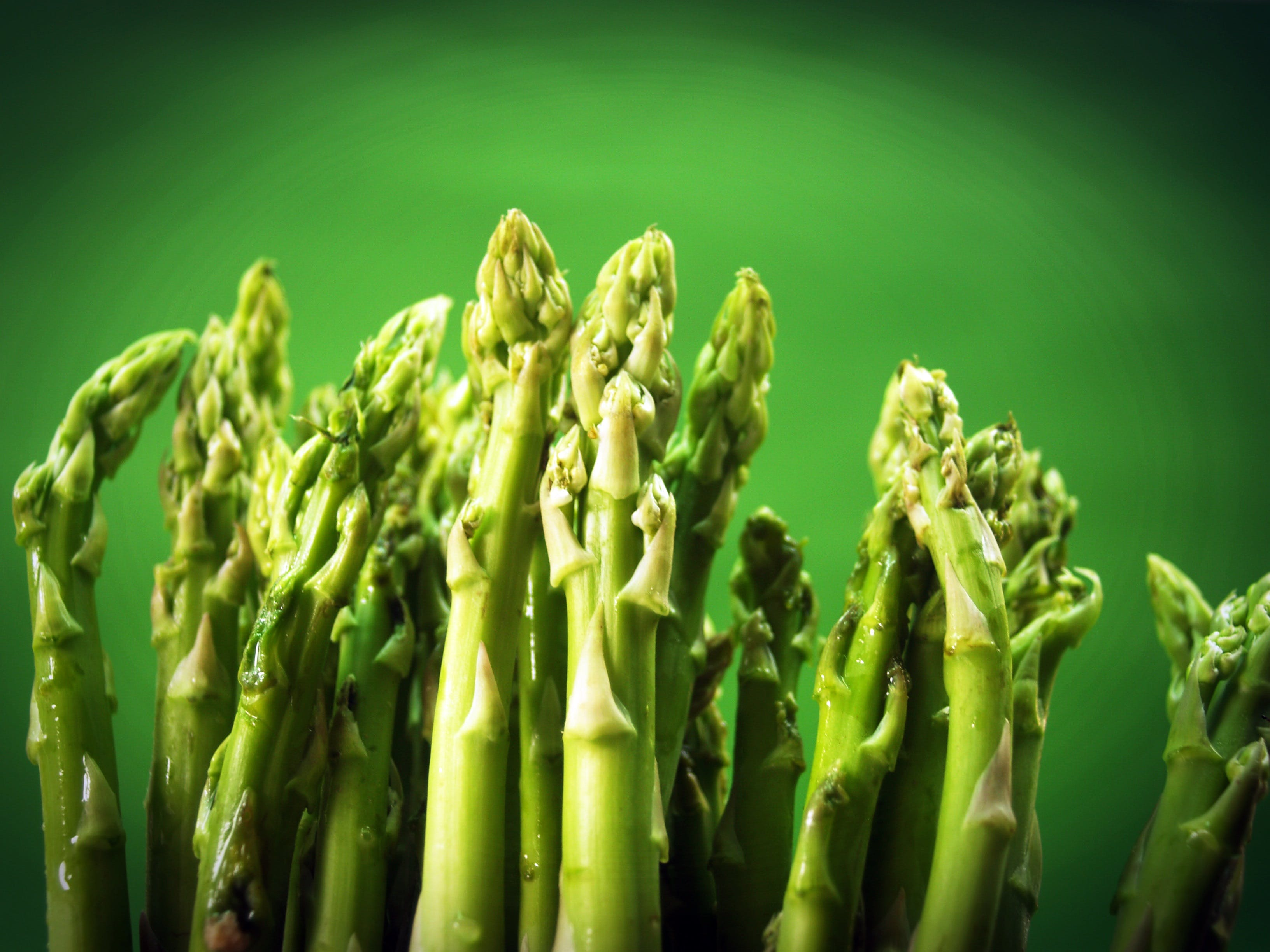 Gratis arkivbilde med asparges, bunt, delikat, farge