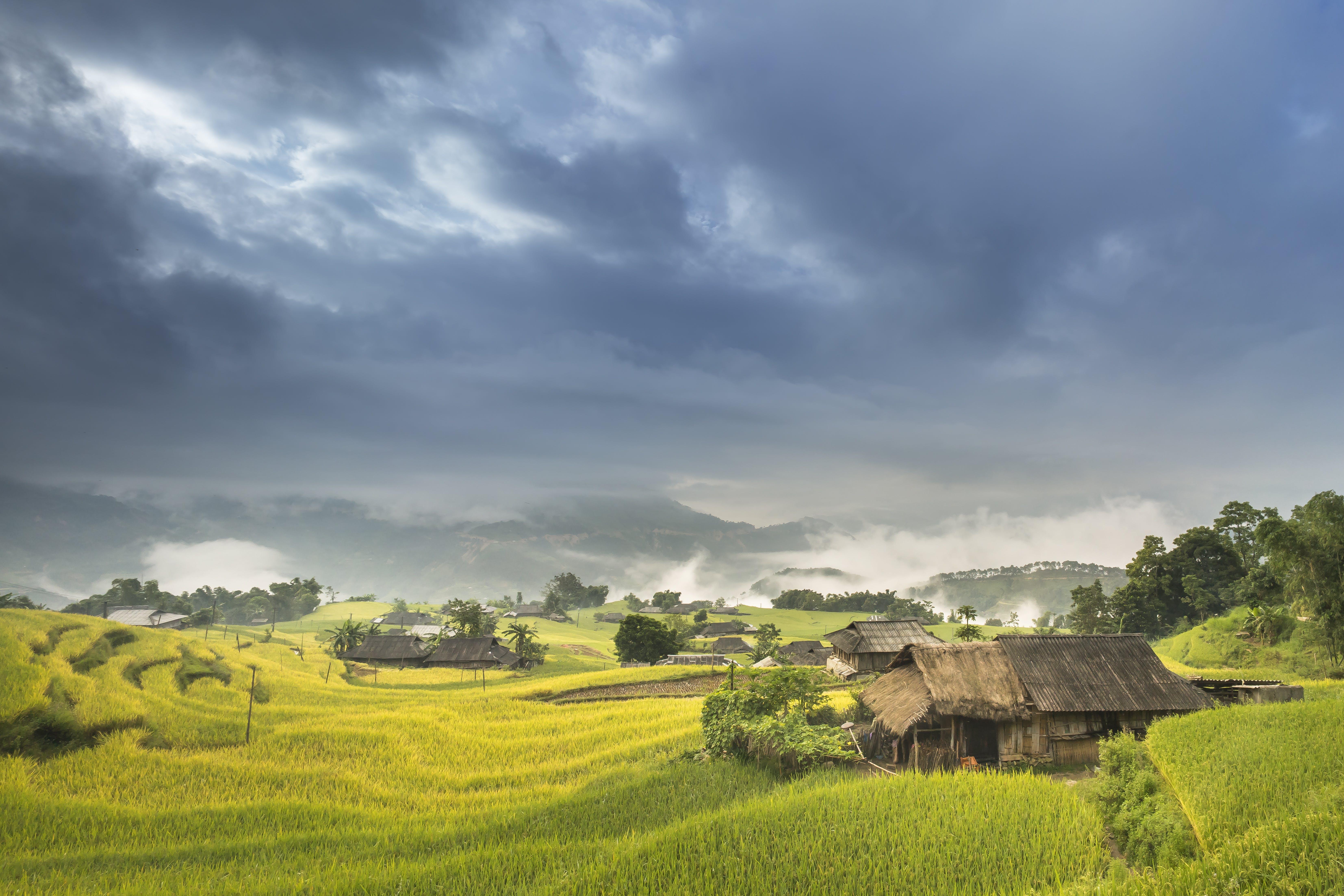 Δωρεάν στοκ φωτογραφιών με αγρόκτημα, αγροτικός, ανάπτυξη, γεωργία
