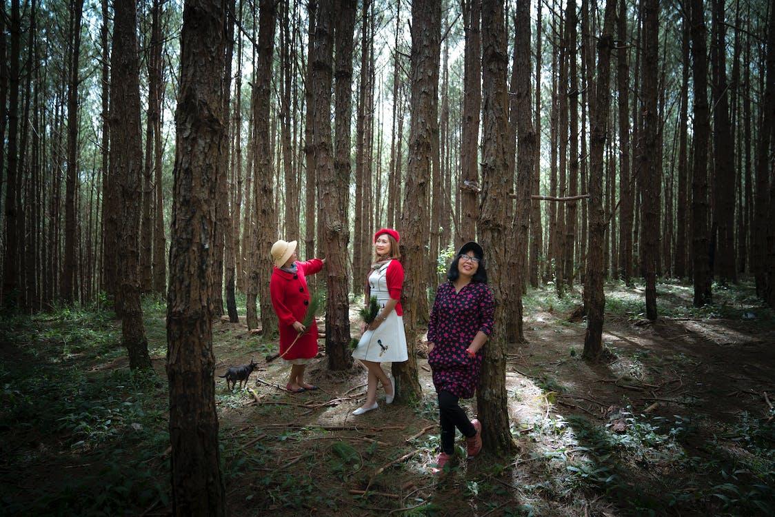 Three Women Standing Under Trees
