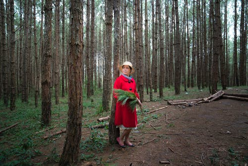 Woman In Red Coat In The Middle Of Woods