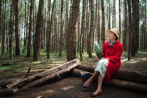 Foto profissional grátis de adulto, ao ar livre, árvores, atraente