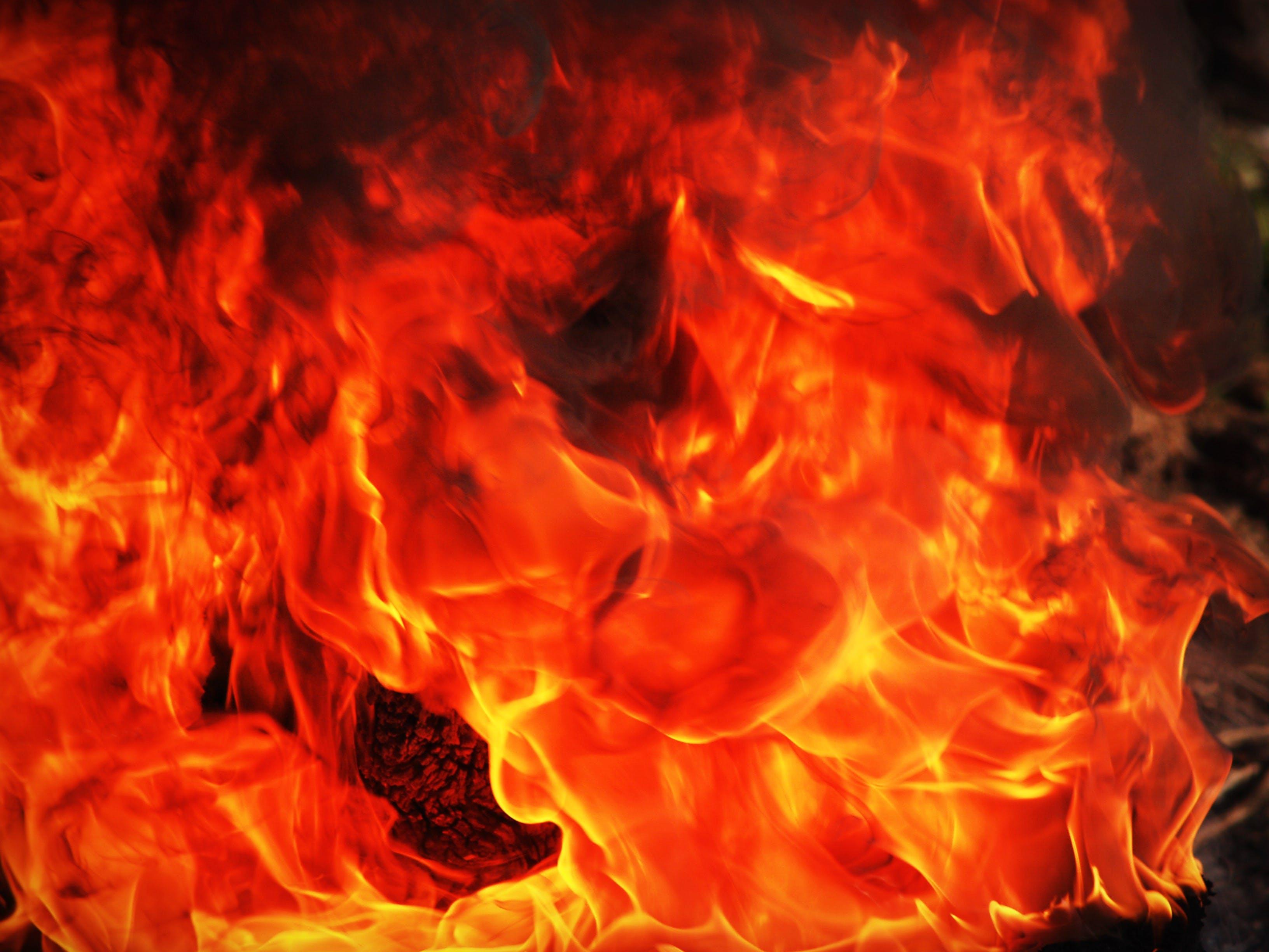 Foto stok gratis Abu, api, api unggun, bagian