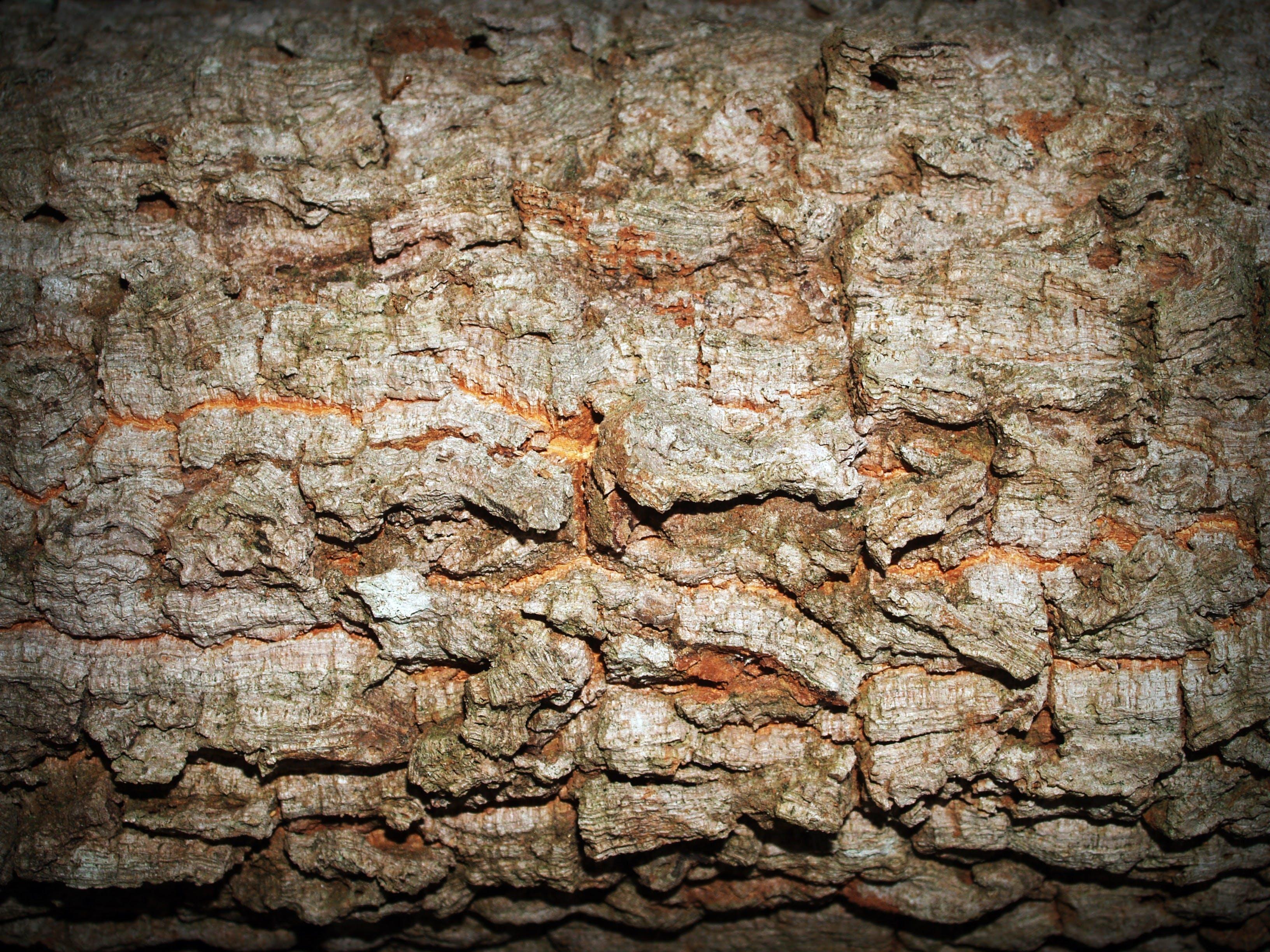 Ilmainen kuvapankkikuva tunnisteilla kalliomaisema, karhea, kivet, kivikkoinen