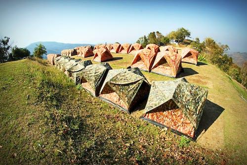 Foto profissional grátis de acampamento, árvores, barracas, calmo