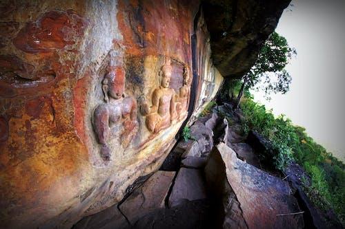 Ilmainen kuvapankkikuva tunnisteilla Aasia, kallio, kasvi, luola