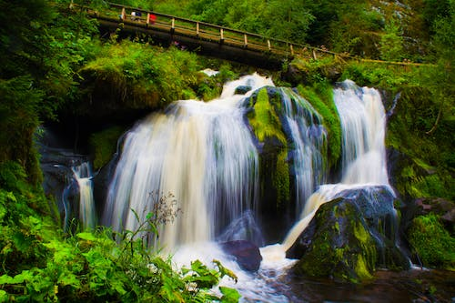 Free stock photo of black forest, waterfall