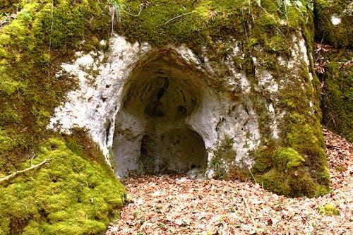 洞穴, 長滿苔蘚的岩石 的 免費圖庫相片