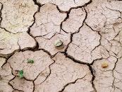 earth, desert, dry
