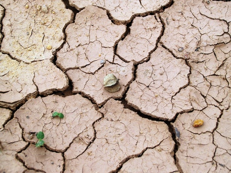 Free stock photo of earth, desert, dry, texture