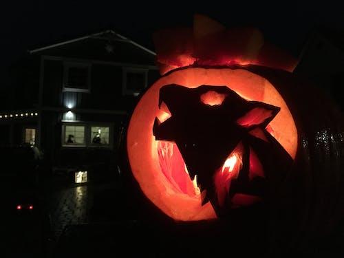Foto d'estoc gratuïta de halloween, home llop, pumkins