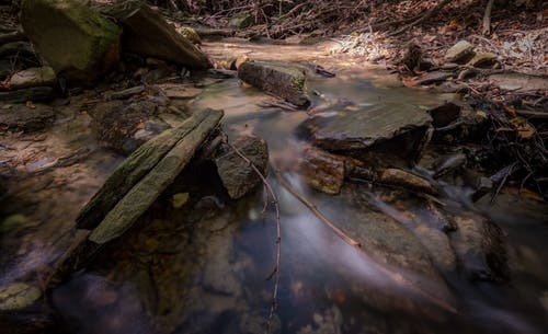 Gratis lagerfoto af å, bevægelse, flow, landskab