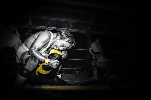 Free stock photo of sport, wrestling