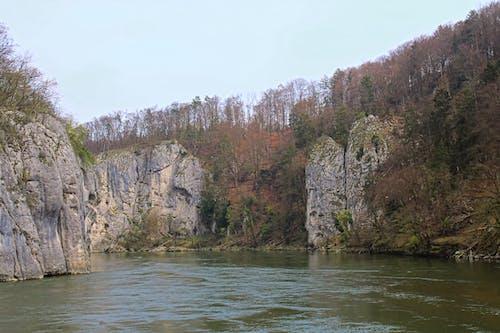 多瑙河, 岩石, 綠林, 長滿苔蘚的岩石 的 免費圖庫相片